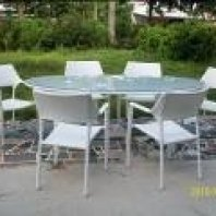 Dinning Set with 6 Chairs